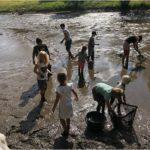 Stříbrný rybník 29.7.2020 - vypuštění + výlov